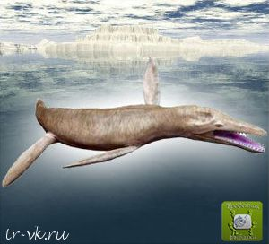 Плиозавр функе